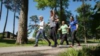 Nordic-Walking_Gruppe-6